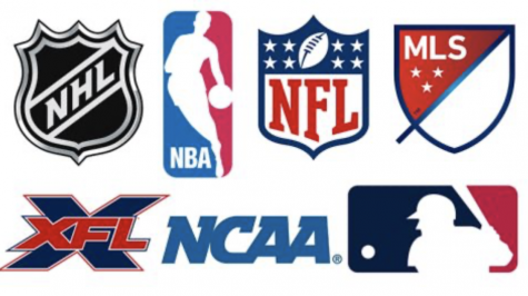 What's the Status of Professional Sports?